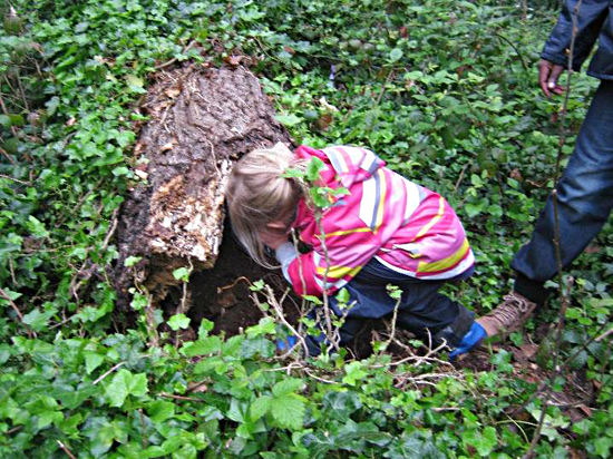 Girl exploring at the forest school, Camden Community Nuseries